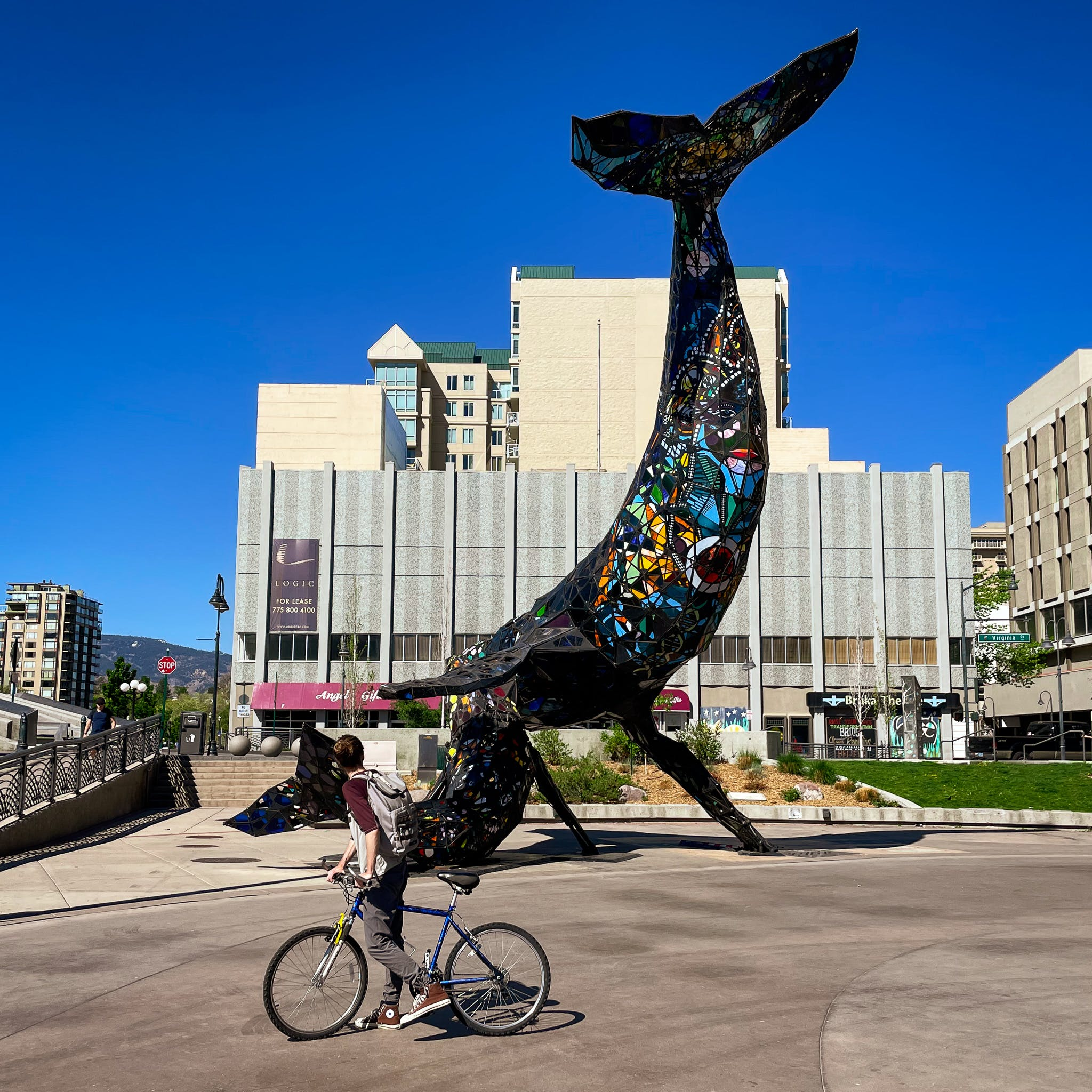 Cyclist by the Burning Man Whale Installation in downtown Reno