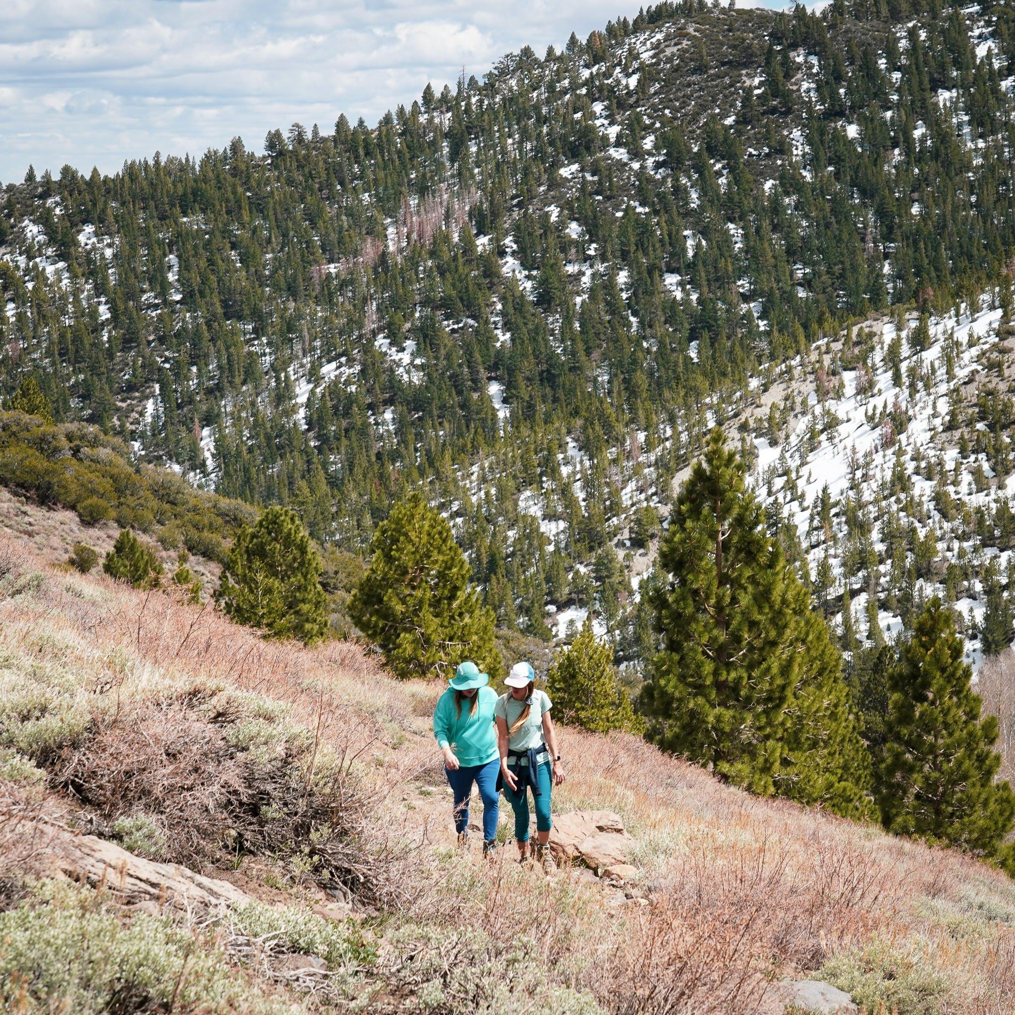 hikers on Thomas Creek Trail in Galena Creek Park