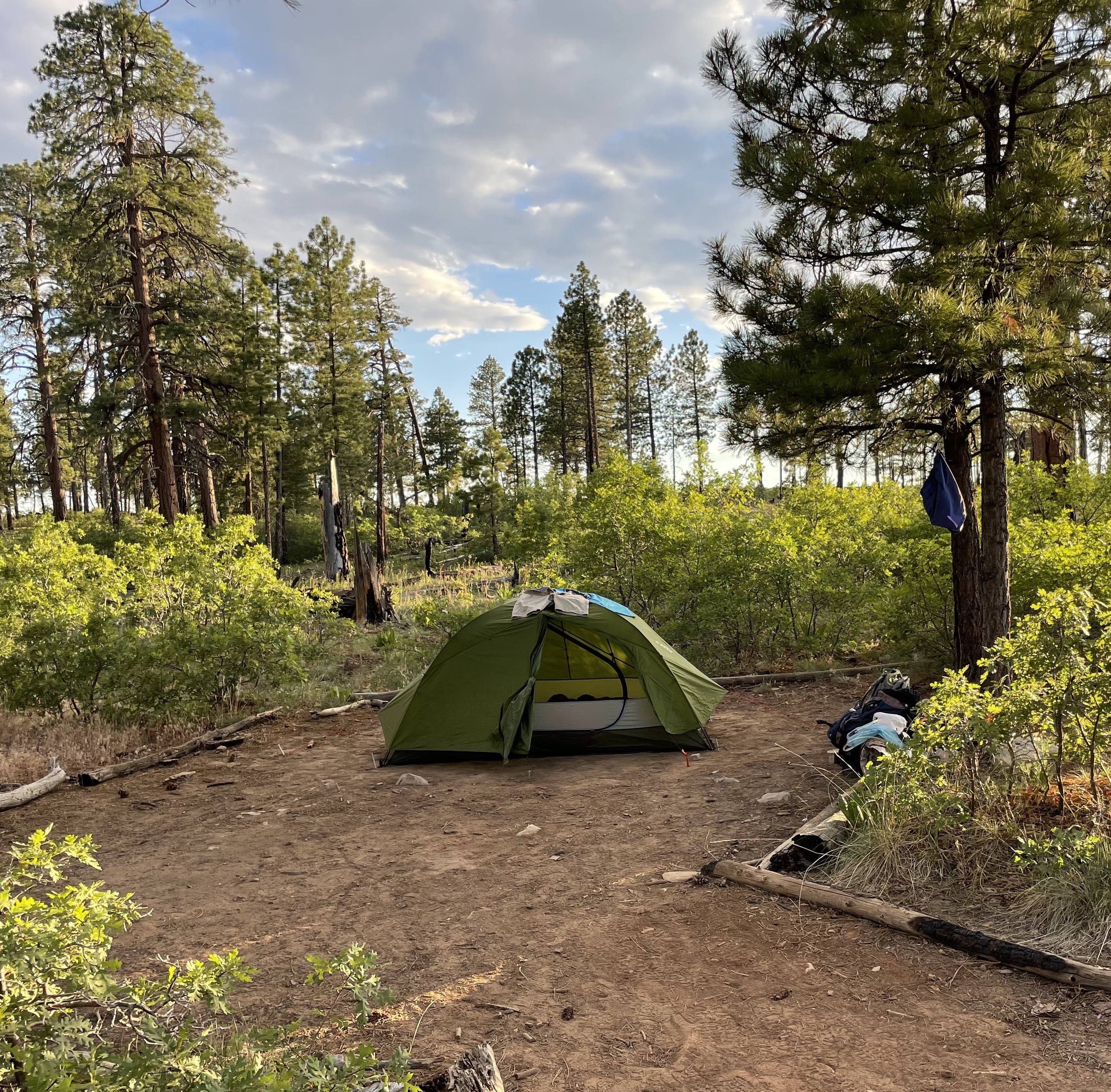 Green tent set up at primitive backpacking campsite on the West Rim at Zion National Park.