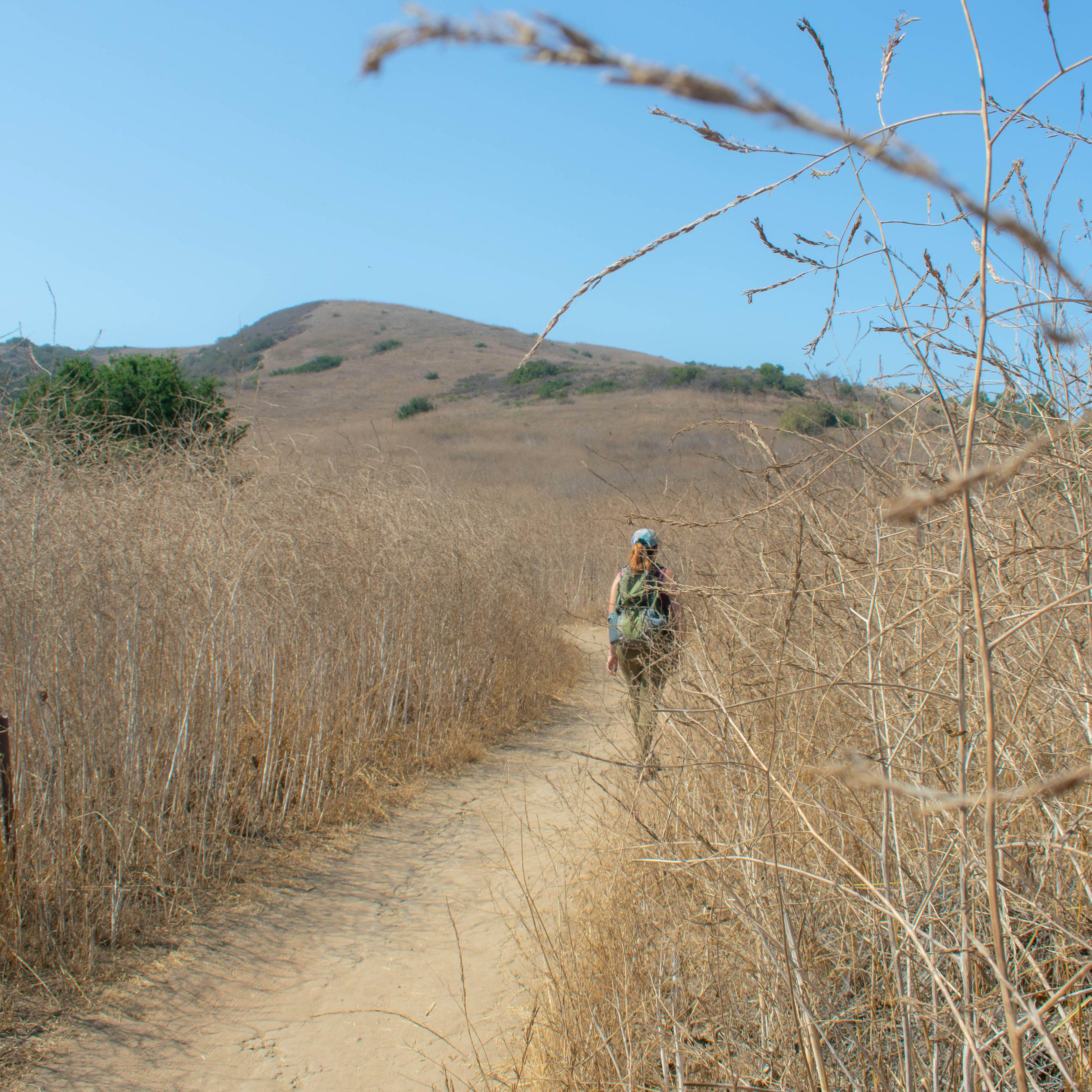 Hiker on a trail at Bommer Canyon Open Space Preserve in Orange County