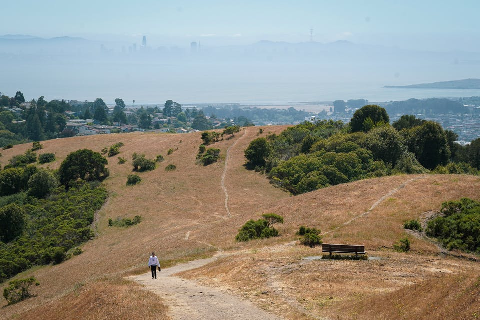 hiking wildcat canyon in the east bay with views of San Francisco Bay