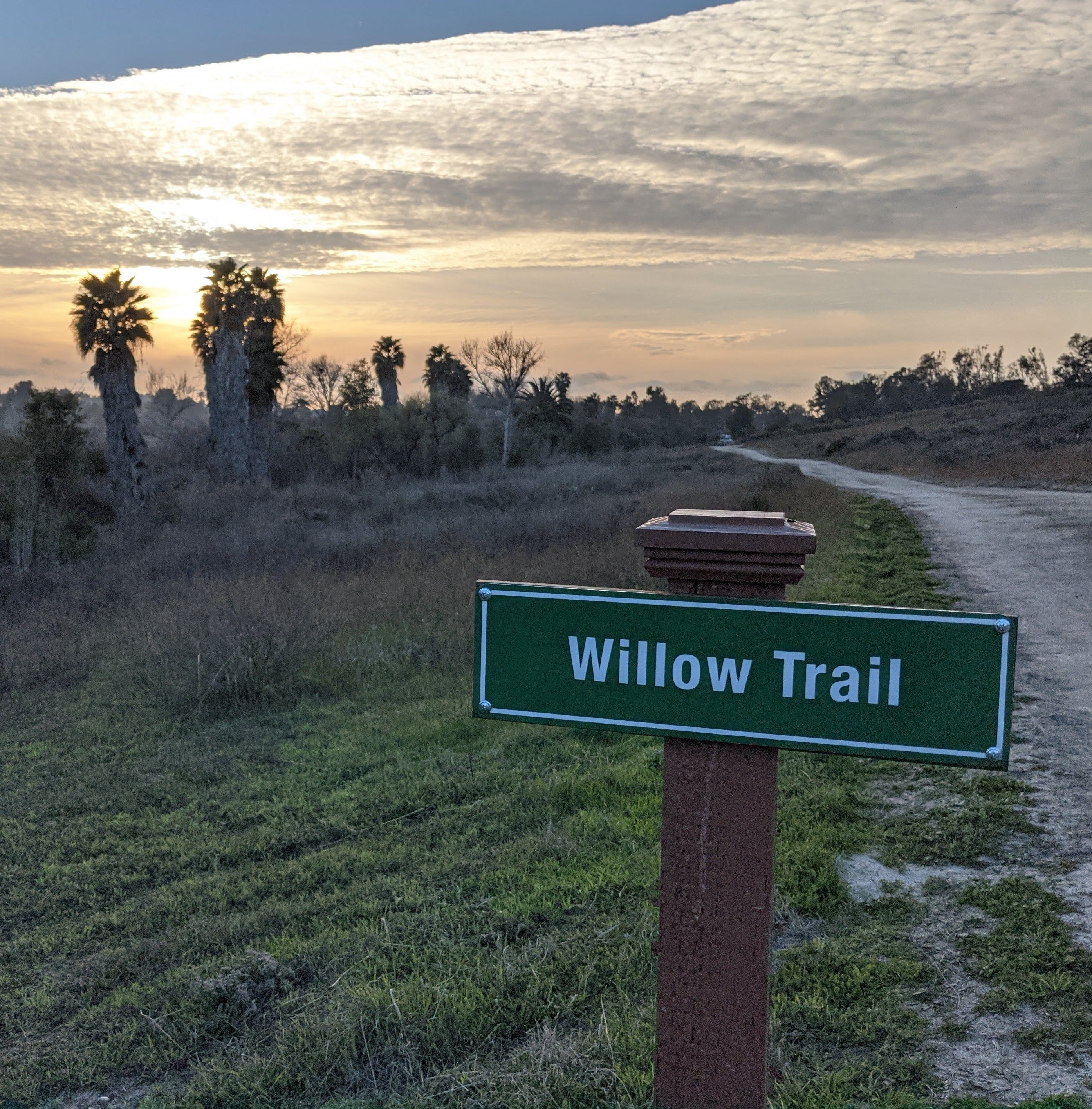 Willow Trail in Guajome County Park San Diego