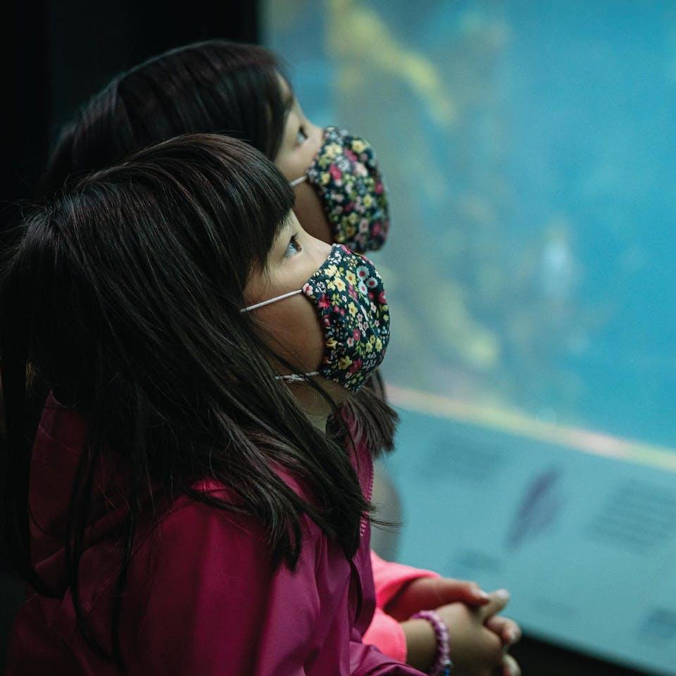 kids at Monterey Bay Aquarium