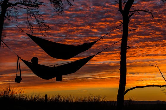 People laying in hammocks looking at sunset