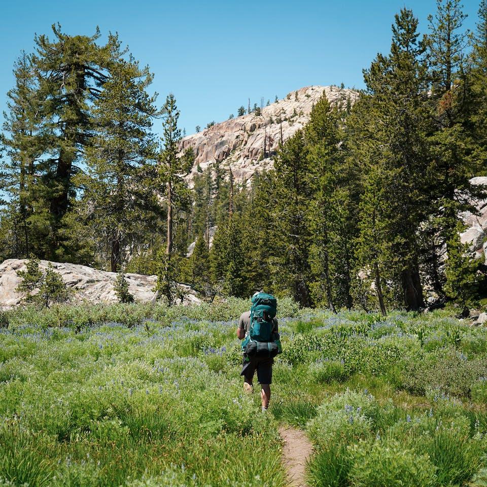 Backpacking Emigrant Wilderness