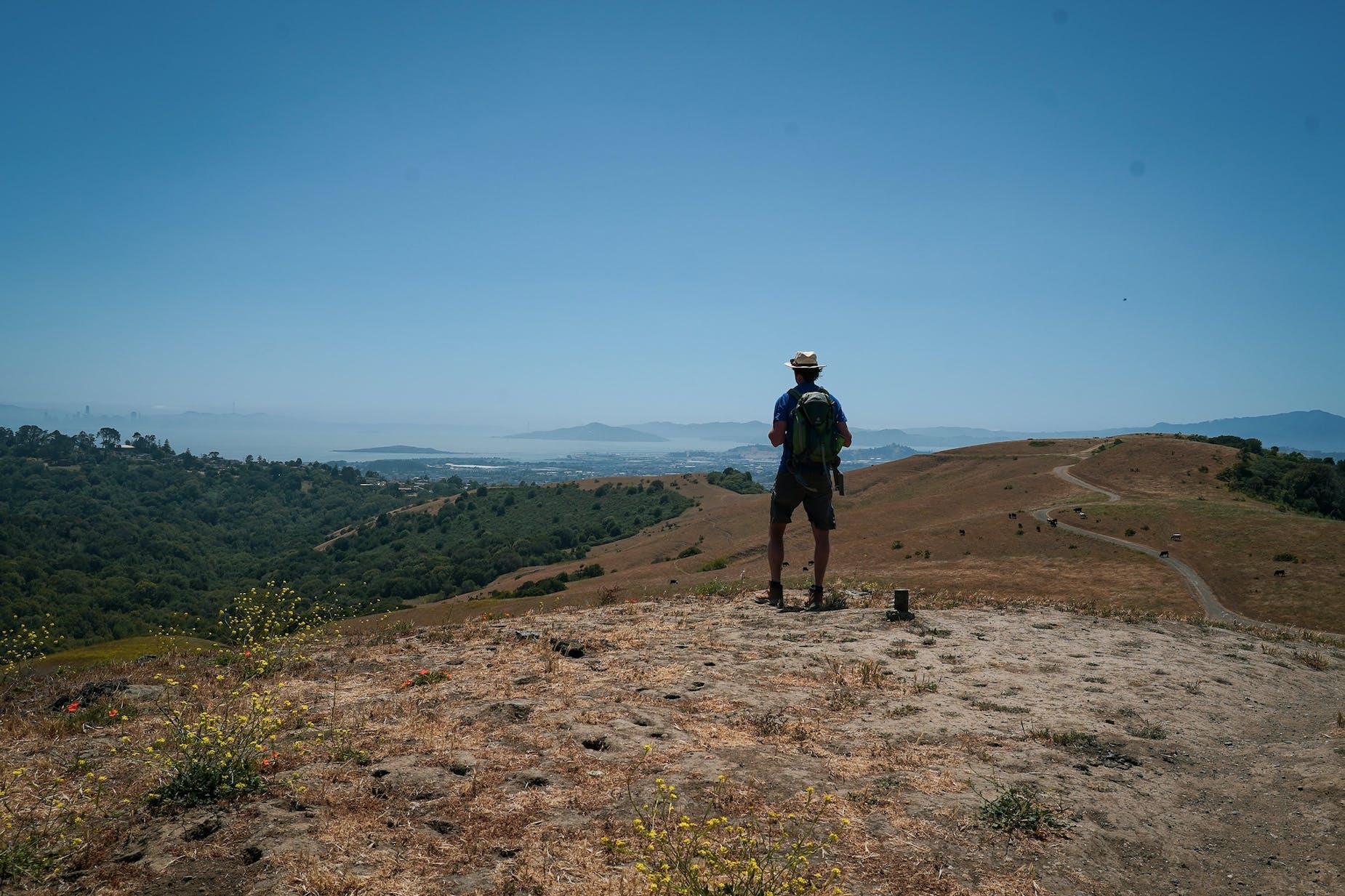 hiker stands on San Pablo Ridge looking at San Francisco Bay