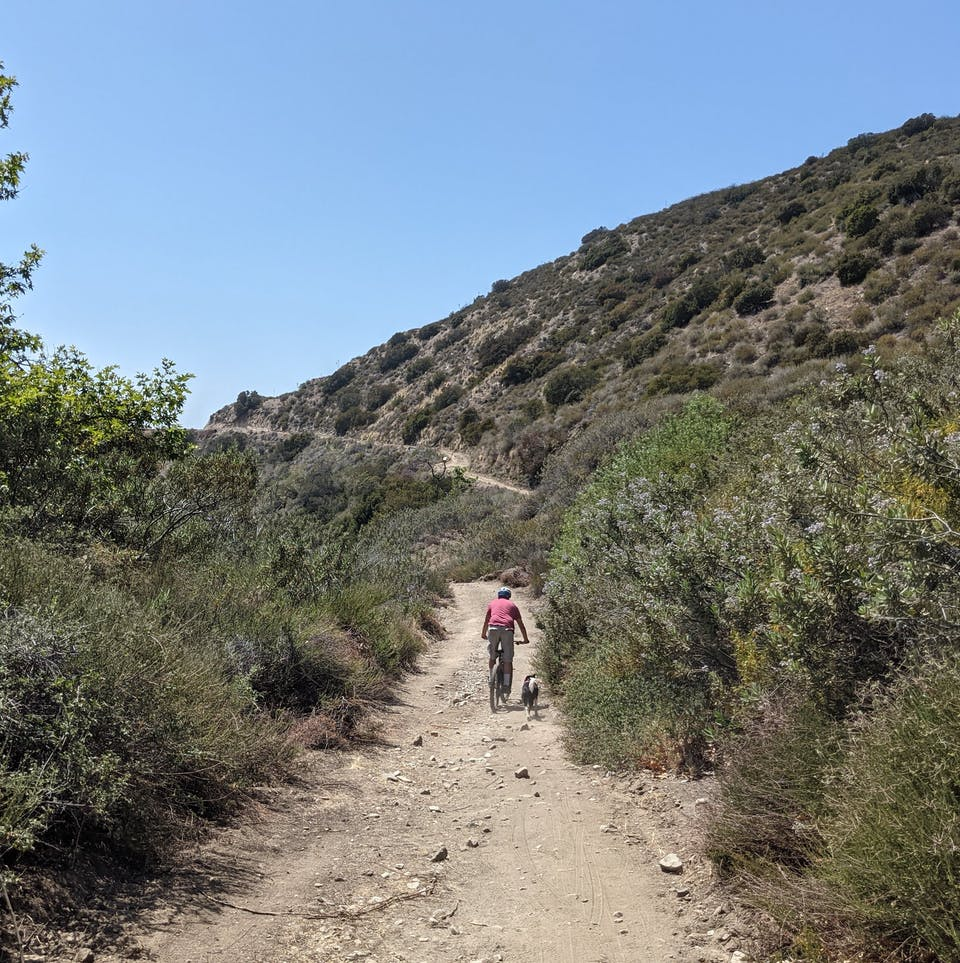 Hiker and dog on a trail in Haines Canyon Debris Basin in the San Gabriels Southern California