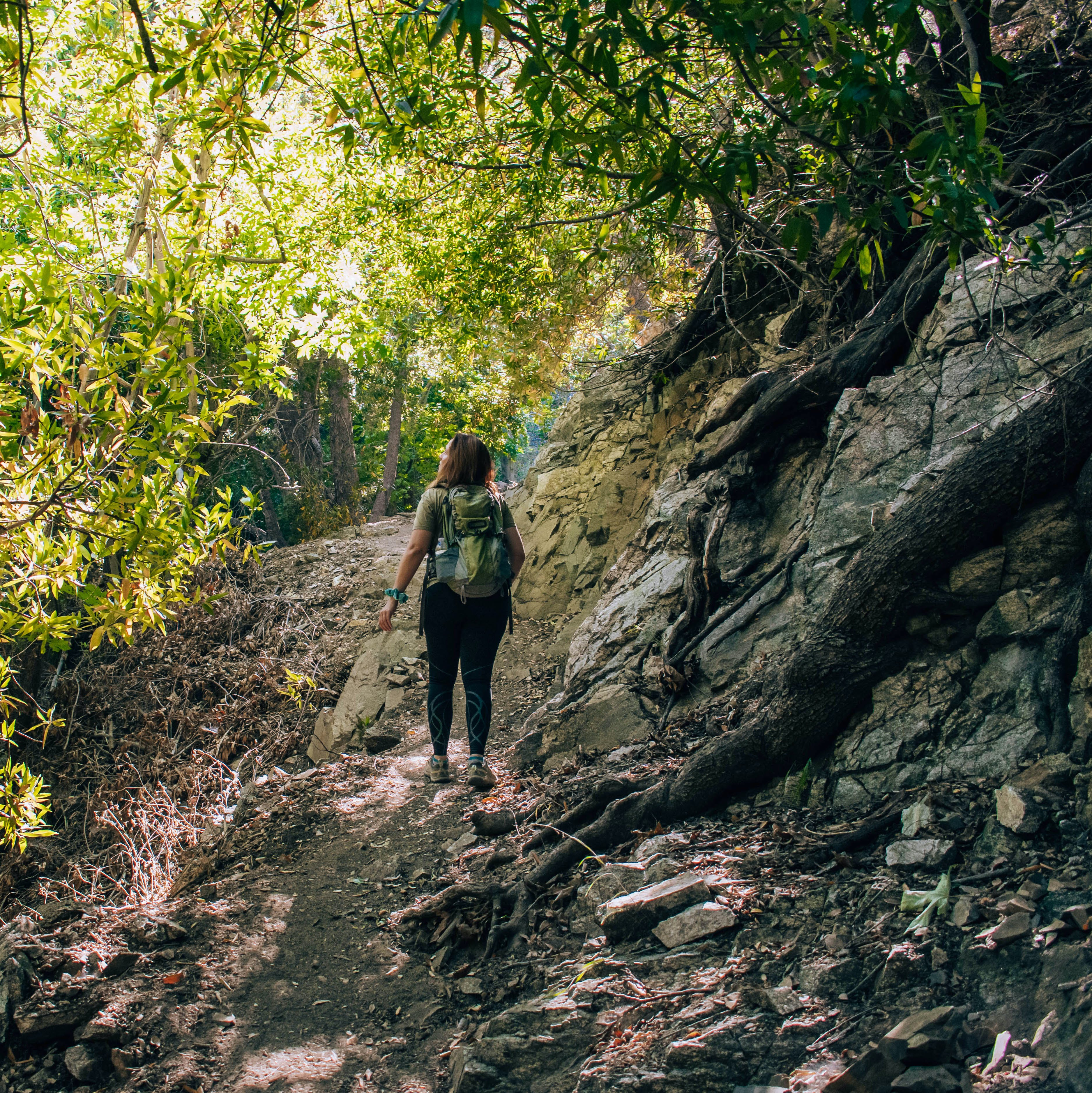 Woman walking through a forested section of the Bear Canyon Trail in Angeles National Forest Los Angeles County
