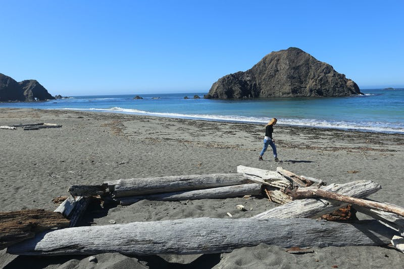 Woman walking by driftwood at Greenwood State Beach in Elk, Northern California near Mendocino