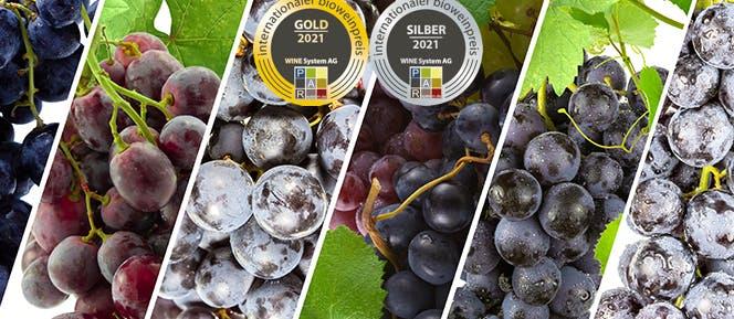 Internationaler Bio Weinpreis 2021