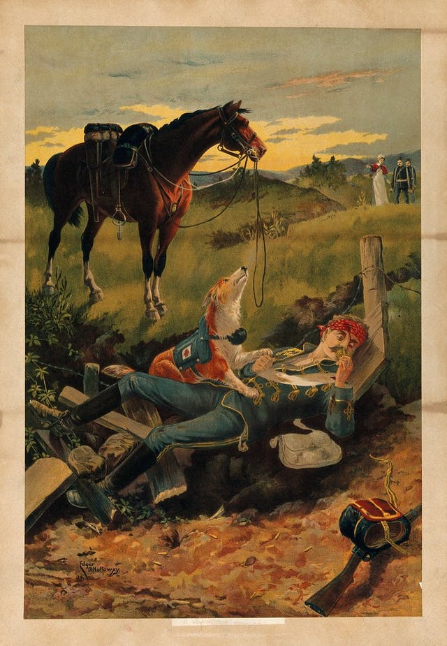 A wounded soldier is lying on the ground, with a rescue dog on top of him, and his horse in the background.