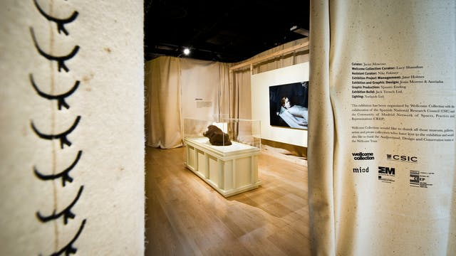 Photograph showing part of the exhibition, Skin, at Wellcome Collection.