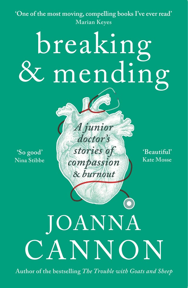 'breaking & mending' book cover