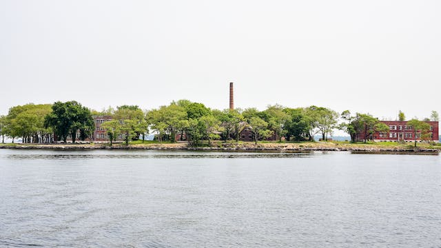 Photograph of a small island. The lower half of the image is water, the upper half and overcast sky. Across the centre of the image is the island, covered in green trees and several 2 and 3 storey buildings and a tall chimney in the centre.