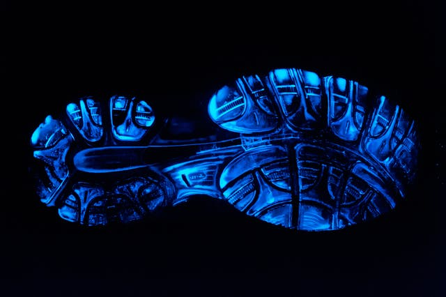 Photograph of the sole of a training shoe which has been treated with luminol to reveal extensive blood traces. These traces show up as bright blue in colour.