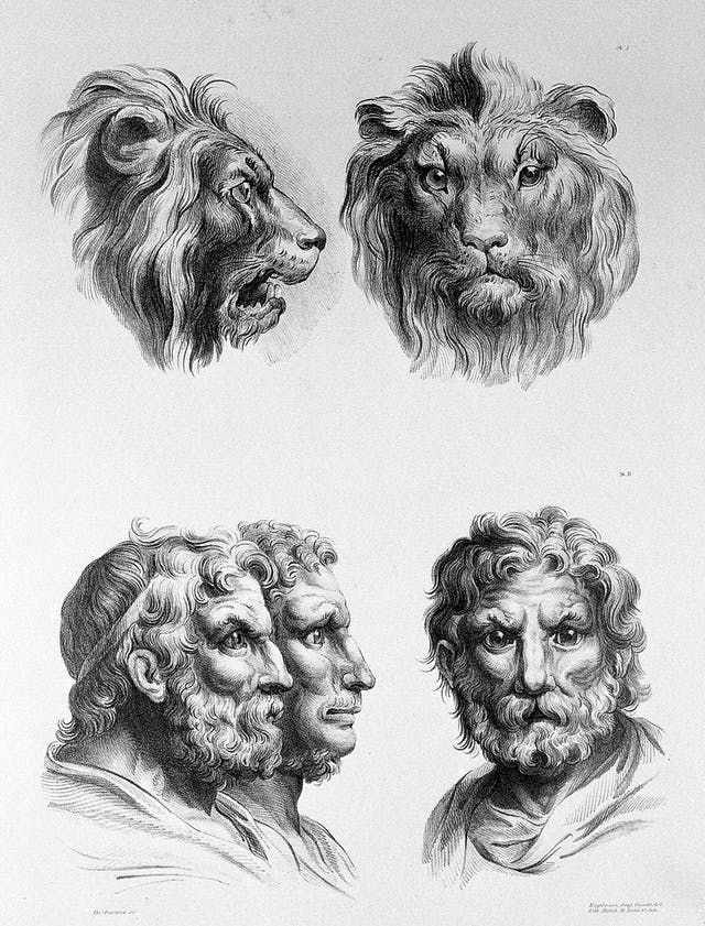 Charles Le Brun, The relation between the human physiognomy and that of the brute creation, 1671