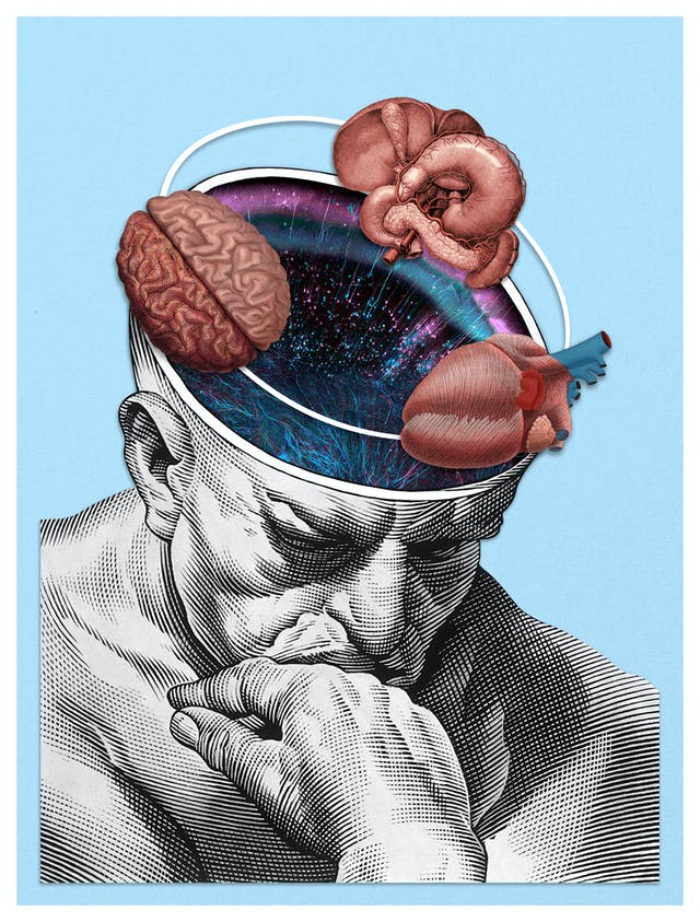 Digital collage of archival material.  Head and shoulders of a man in a thinking pose with his chin resting on his hand. His head has been cross-sectioned.  The resulting void shows a series of colourful electrical impulses.  Surrounding the head are archival illustrations of the brain, the heart and the stomach.