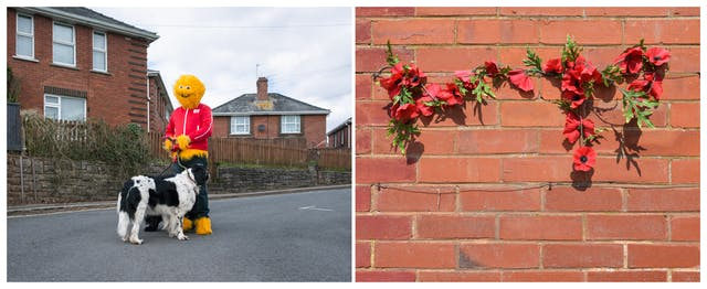 A photographic diptych. The image on the left shows an adult wearing a furry yellow Honey Monster costume, including a red tracksuit top and blue tracksuit bottoms standing in a residential road with red brick houses beyond. The Honey Monster is holding a large black and white dog facing away from camera. The image on the right shows a close up of an artificial red poppy garland held to a red brick e wall with wire.