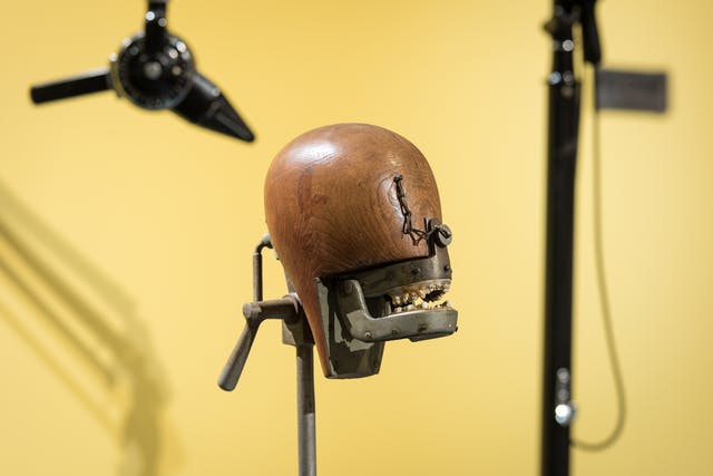 Photograph of a phantom head dental teaching aid in the exhibition Teeth.