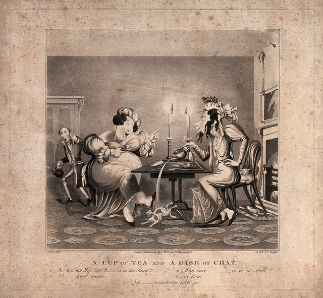 Black and white illustration showing two women sit at a table drinking tea and gossiping, and spilling tea on a cat. A man looks shocked in the background.