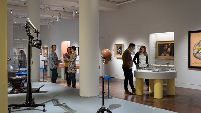 Photograph of visitors exploring the Teeth exhibition at Wellcome Collection.