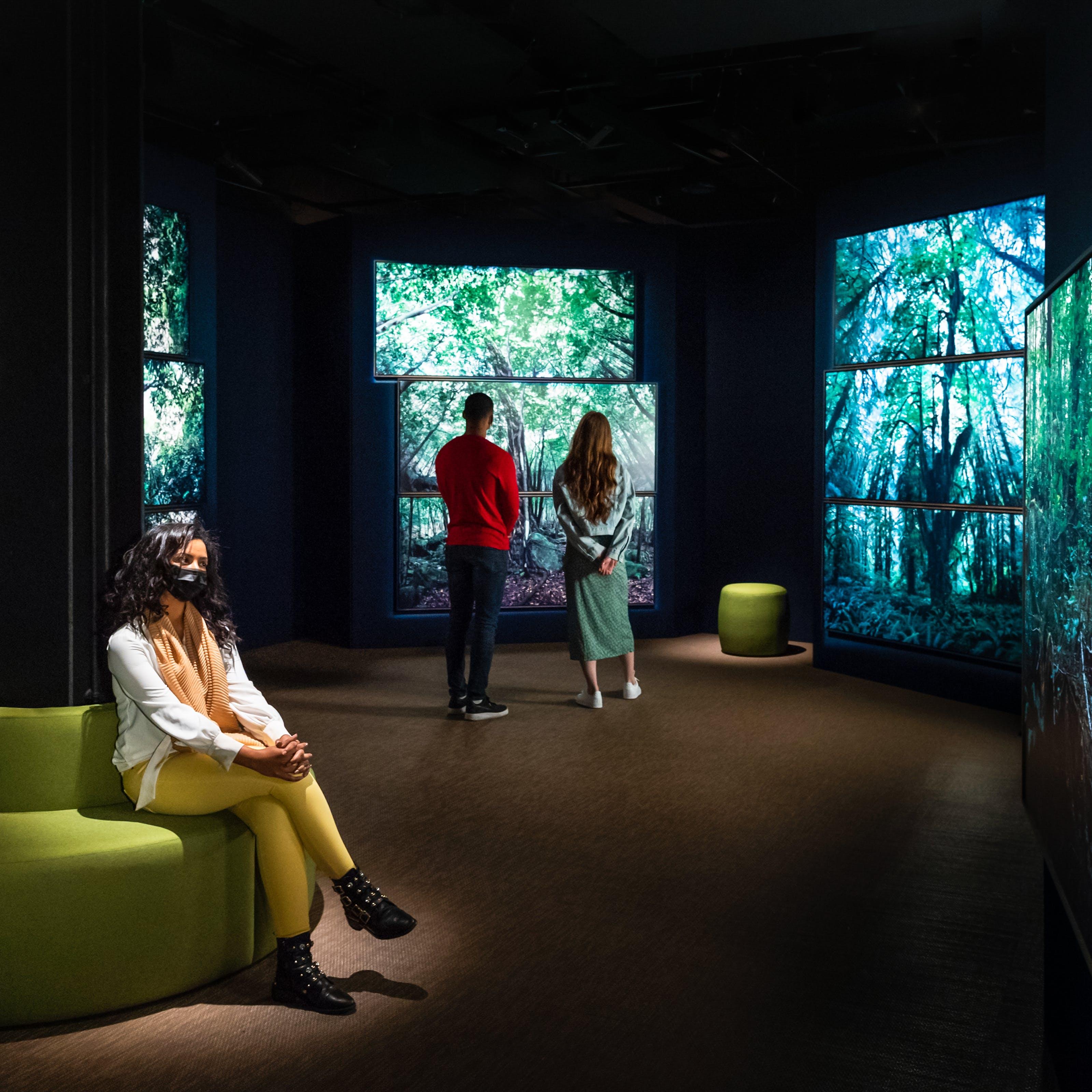 黑暗的画廊空间的照片,显示了4个独立的大墙壁上的照片打印的大型森林场景,填充了整个墙壁。这些脚印显示了高大的树干,绿色的冠层和地面的蕨类植物。在画廊的左侧是一个圆形衬垫的绿色座椅,围绕垂直铁梁缠绕。坐在座位上的十字架是长长的黑发的女人,一件白色的衬衫和黄色紧身裤。她的脖子上有一个橙色披肩,戴着黑色脸上的遮盖。她几乎直接在她身边的光线点击。在距离中,有两个游客背部到相机,站在看着其中一个森林场景。他们的权利是一个小型衬垫凳子。