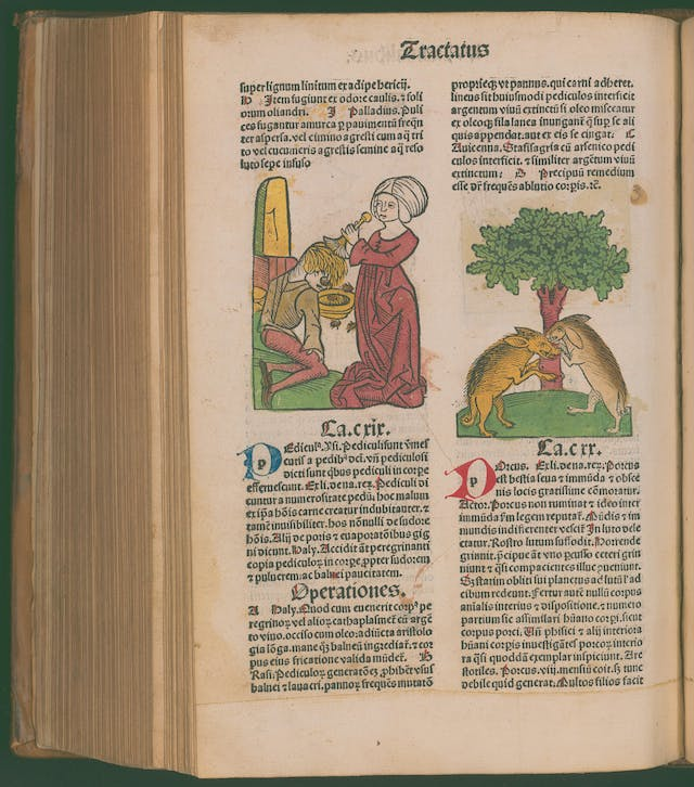 A page with latin text and two illustrations: one of a woman washing a man
