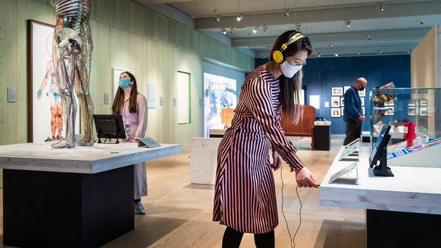 Photograph of a museum gallery space with display cases and exhibits. In the foreground is a woman wearing a face covering and a pair of yellow over the ear headphones. She is in the process of plugging the headphones into the socket of an audio exhibit. To the right of her is another woman also wearing a face covering who is looking up at a transparent model of human being. In the far distance is a man, also wearing a face covering who is exploring the exhibiton.