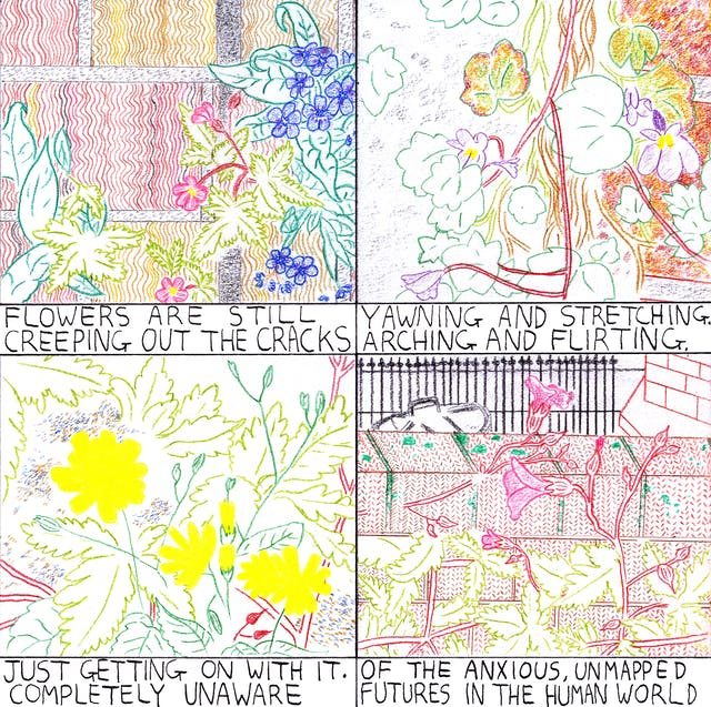 Flowers comic in four frames by Rob Bidder