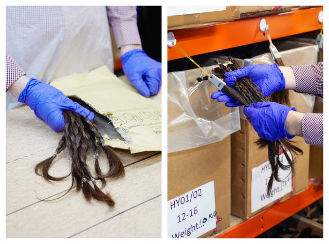 Photographic diptych. The image on the left show a close-up of a tabletop on which is an opened padded envelope. Standing behind the table is a person wearing purple latex gloves, a shite plastic apron and a checked cotton shirt. In their right hand they are holding several plaited lengths of brown hair which have come out of the envelope. The image on the right show the same person holding the plaited lengths up to a shelving unit containing labelled cardboard boxes. They are comparing the plaited hair to a sample of hair hanging off the shelving.