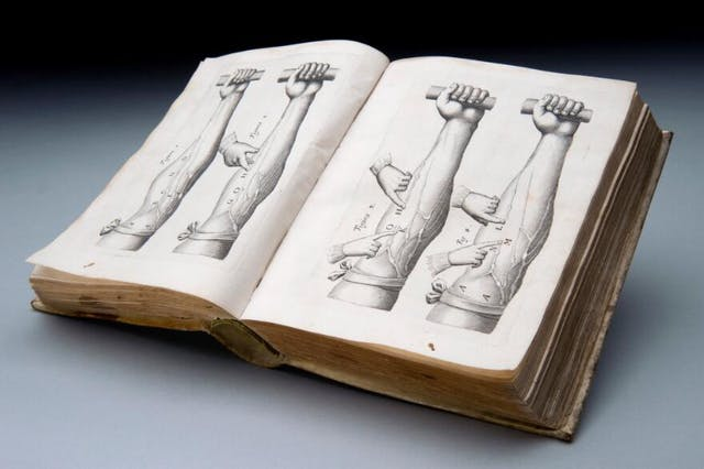 Photograph of an open hardback book resting on a grey surface. The two open pages of the book show four black and white drawings of a human forearm with the hand holding a bar. Another pair of hands are pressing specific points on the veins of the arms. The illustrations show experiments made on the veins to prove the presence of valves that permit blood flow in one direction only.