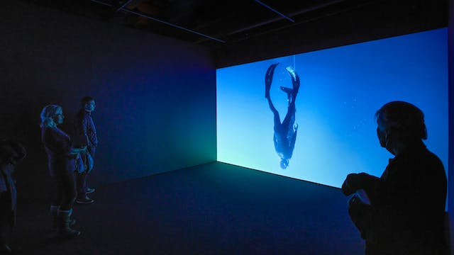 Photograph of a dark gallery space with one wall lit up with a projected film of a diver. In the foreground are visitors looking at the film.