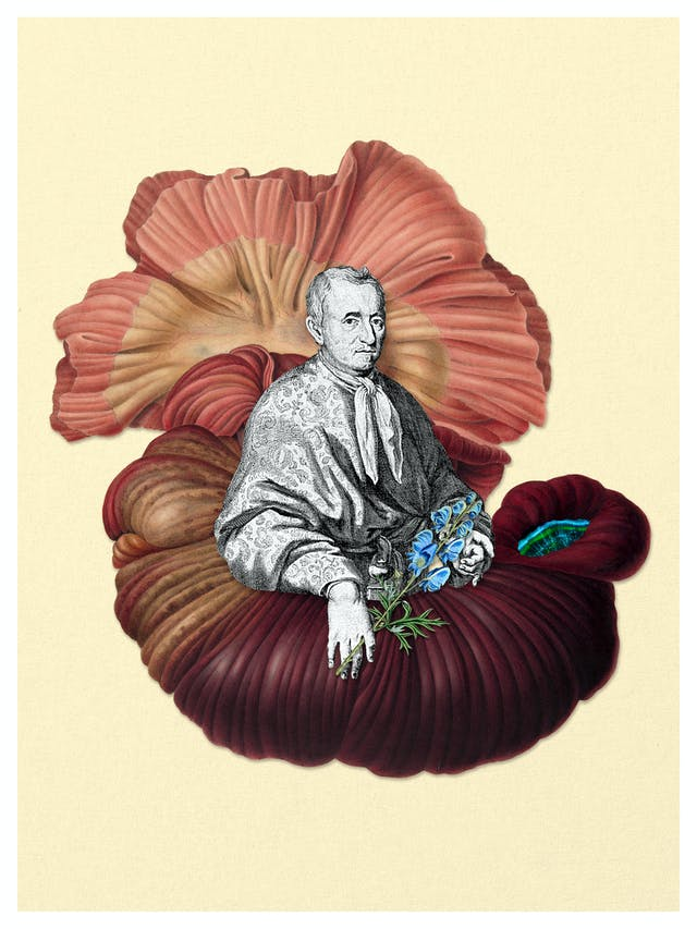 Digital collage of archival material.  A man is nested within an illustration of the gut, holding a wolfsbane plant and looking at the viewer.  In the cavity of the gut there is a small, universe like hole.