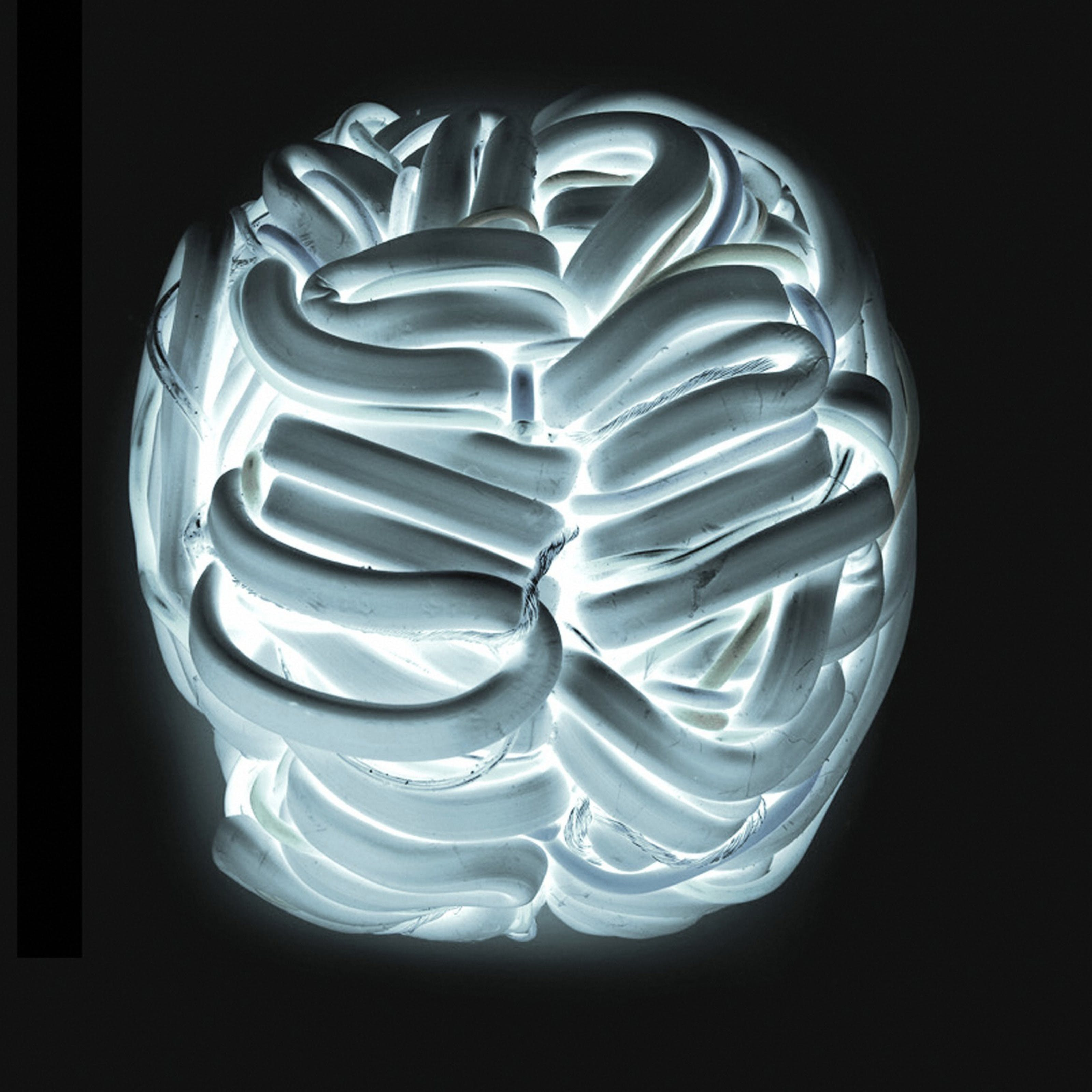Wires covered in a white polymer twisting and turning to form an artistic representation of the brain