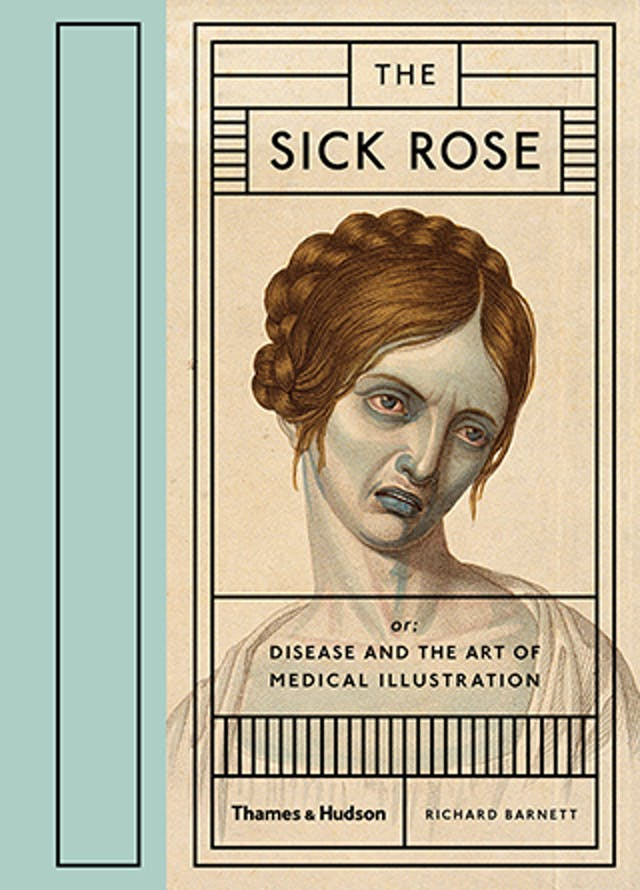 Book cover of The Sick Rose by Richard Barnett