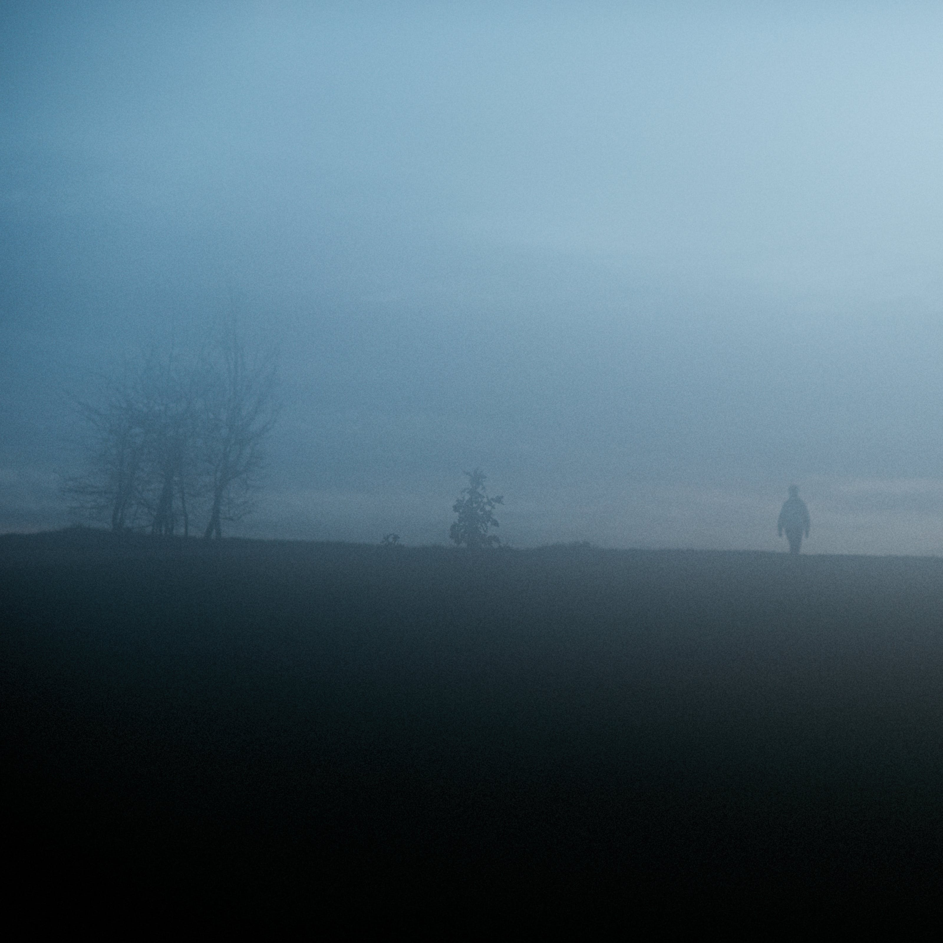 Photograph of a foggy park scene with a horizon line cutting horizontally through the landscape. Above the horizon line is a blue hued cloud ladened sky, grainy and misty. Below the horizon line is the dark green of the parkland grass. rising up from the horizon in silhouette are the shapes of trees, a park bench and a solitary figure of a person.