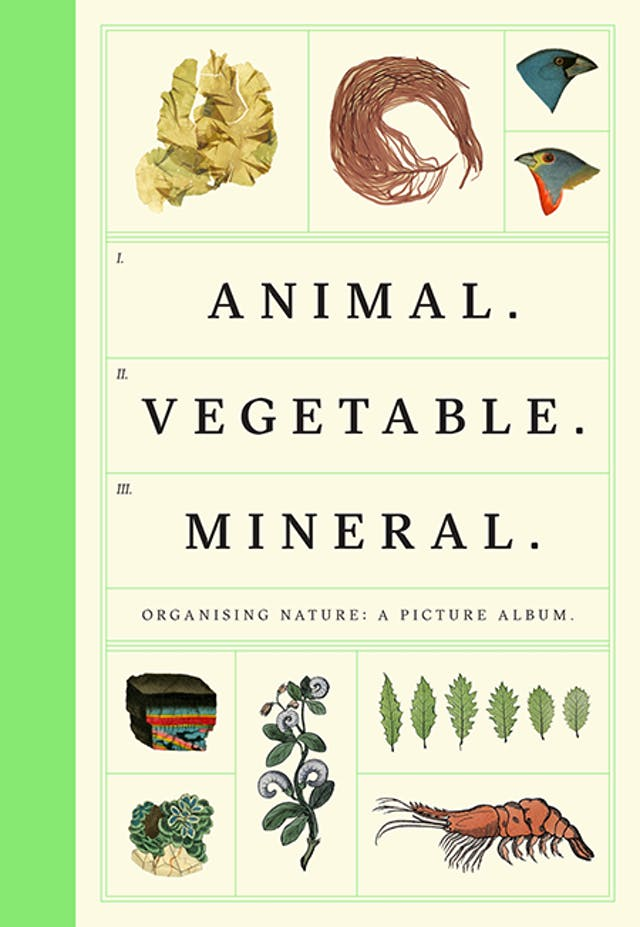 Book cover of Animal Vegetable Mineral by