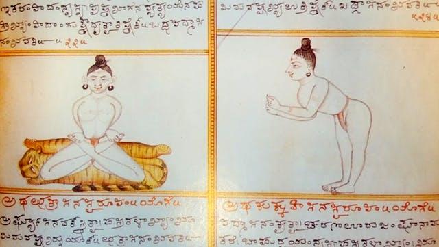 Yoga figures from the Sritattvanidhi manuscript at Mysore Palace