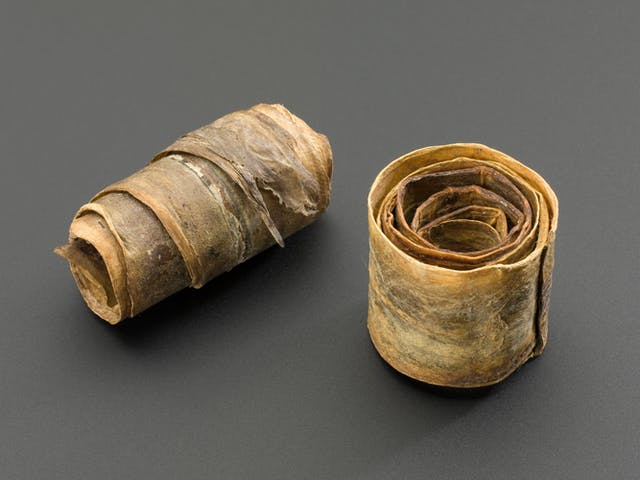 Two tight coils of leathery-looking dried fishskin, one upright and one on its side
