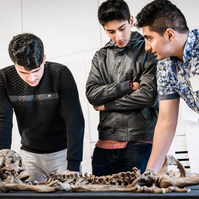 Photograph of three young men discussing a skeleton which is laid out on a table in front of them.