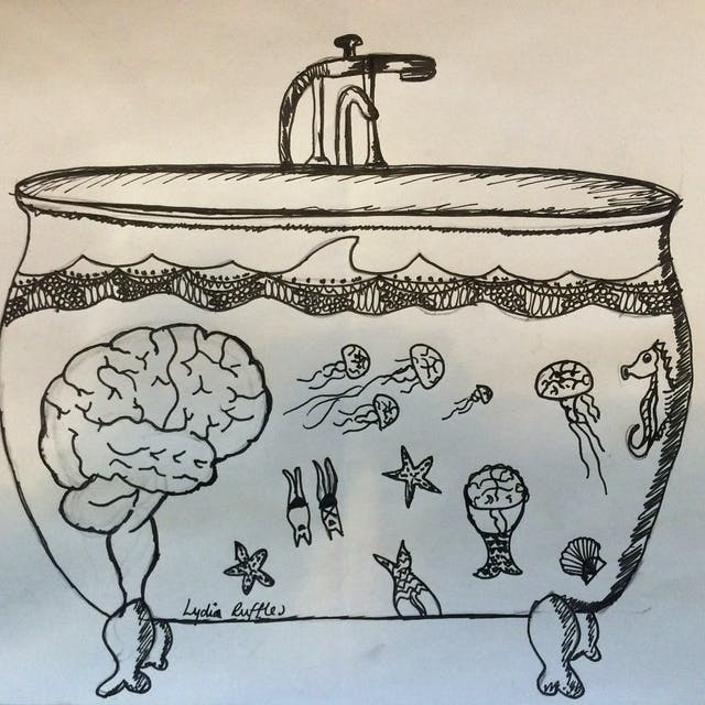 Drawing in black ink of a roll-top bath filled with water, with a brain and various marine creatures inside it.