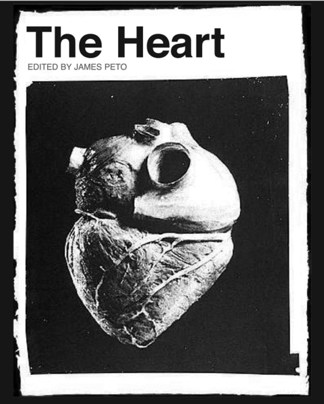 Book cover of The Heart by Edited by James Peto