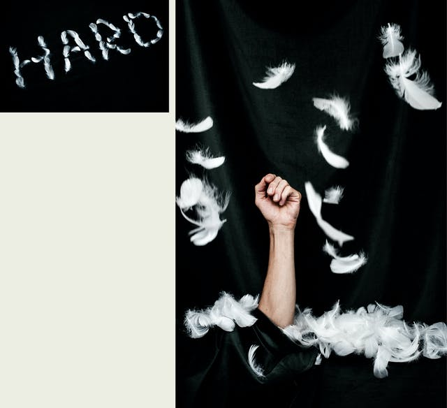 Photographic diptych, one large vertical image on the right and one smaller horizontal image on the left. The one on the right shows an arm and hand emerging vertically through a black velvet background, the fingers lightly curled. Around the arm, collected on the flat surface and floating down in the air are white feathers. The image on the left shows the word