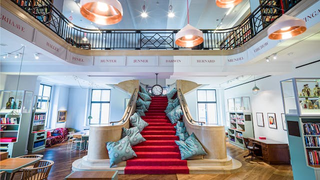 Photograph of a stone staircase with a red carpet down the centre, leading up to an upper gallery which overlooks the ground floor. Copper light shades hang from the ceiling. Downstairs are exhibition display cases and tables and upstairs there are library bookshelves.
