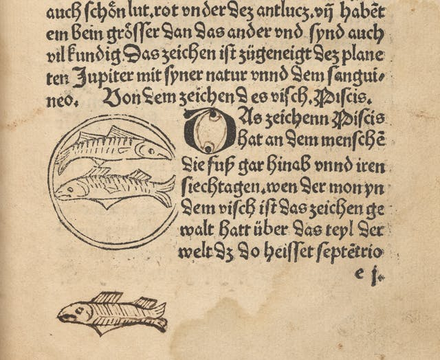 Photograph of a page from an early printed book where a previous owner has had a go at copying an illustration of a fish.