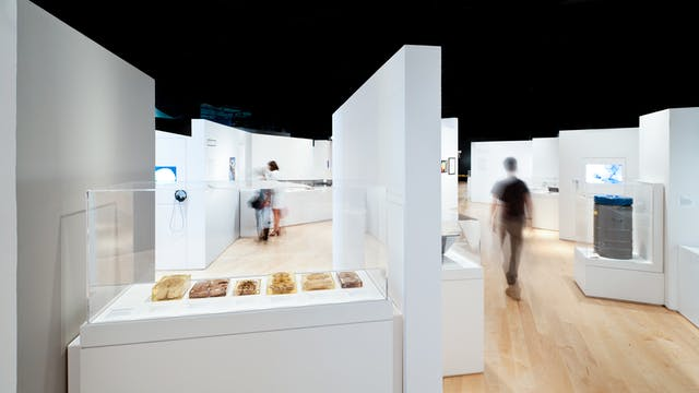 Photograph of the Brains: The Mind as Matter gallery space with display cases and visitors walking through the space.