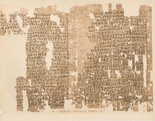 Picture of the Kahun Gynaecological Papyrus, a papyrus document with hieroglyphs.