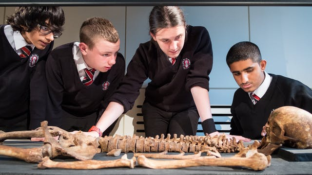 Photograph of young students examining a skeleton as part of a Wellcome Collection school study day.