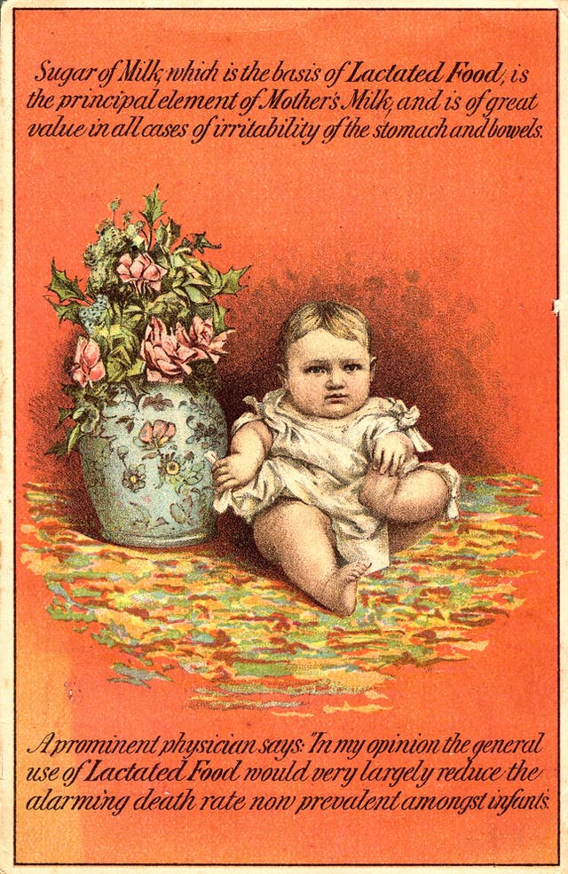 Victorian card with an orange background depicting a baby next to a vase of flowers. Text reads: Sugar of Milk, which is the basis of Lactated Food, is the principal element of Mother