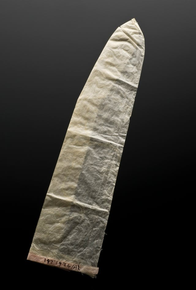 Photograph of a condom, England, 1901-1930, made of animal gut membrane, known as caecal, on a black background.